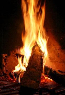 20080514003230-fuego.jpg