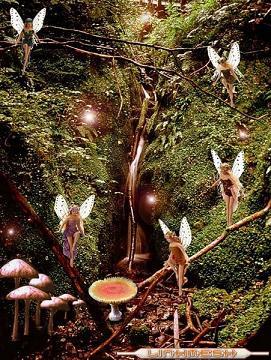 20080709220132-hadas-del-bosque.jpg