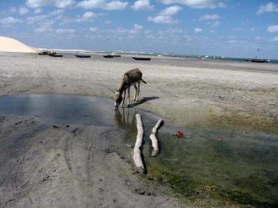 20081116192603-agua.jpg