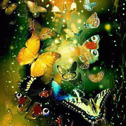20130324113714-mariposas.jpg