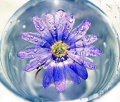 20060429232213-azul-en-cristal.jpg