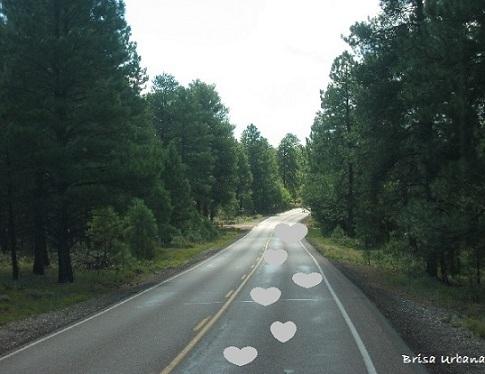 20120304235222-huellas-de-amor.jpg