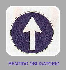 20130727111840-sentido-obligatorio.jpg